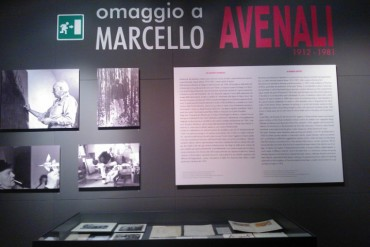 Marcello Avenali