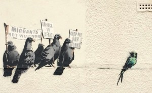 banksy-uccelli