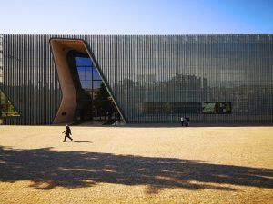 IL MUSEO POLIN